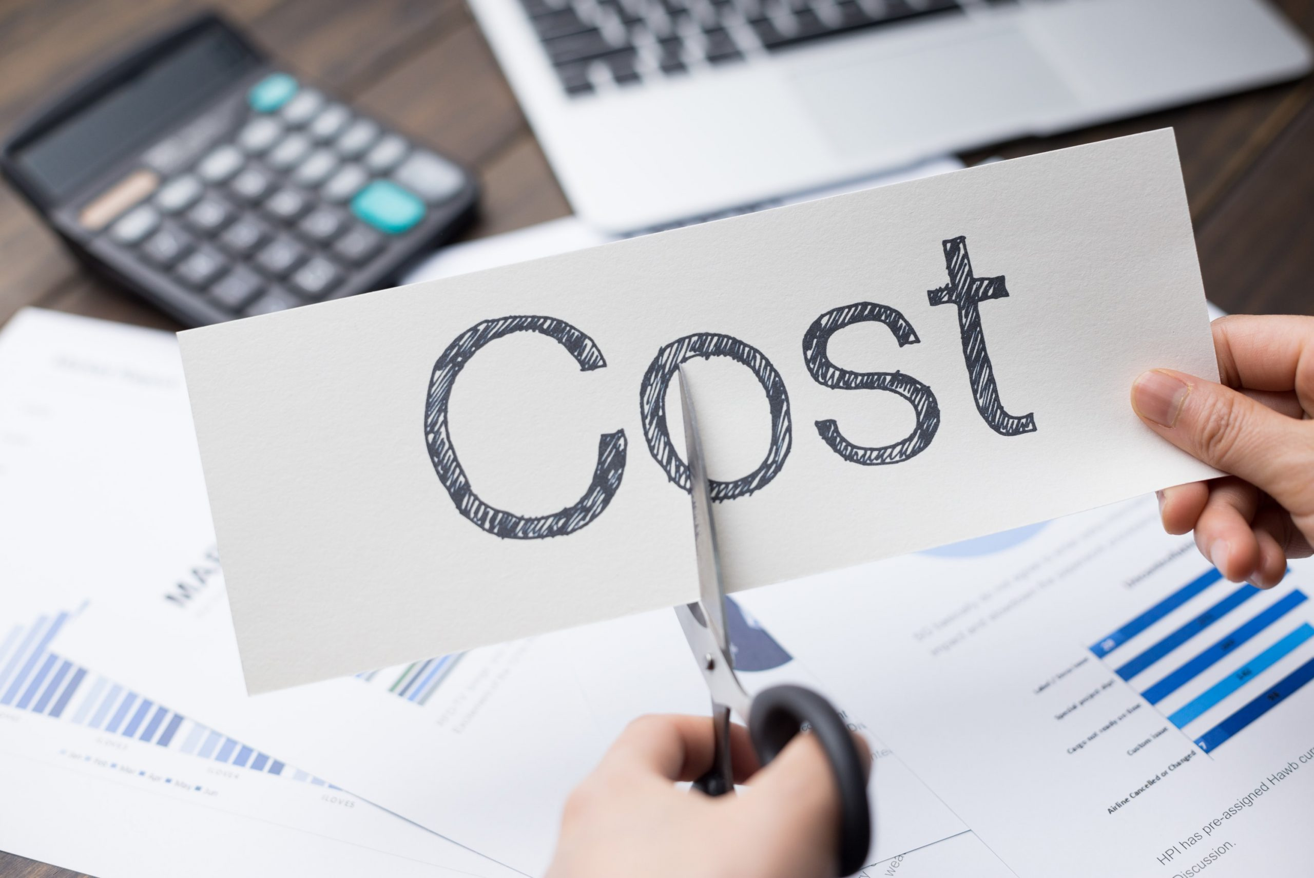 Importance of Payroll Services in Cutting Business Costs